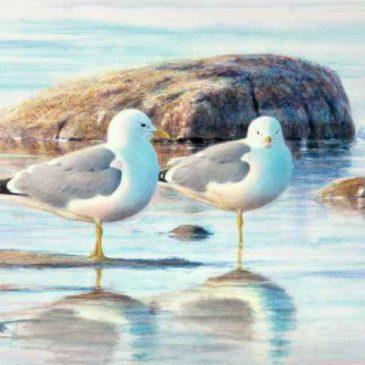 En mästare på att måla fåglar